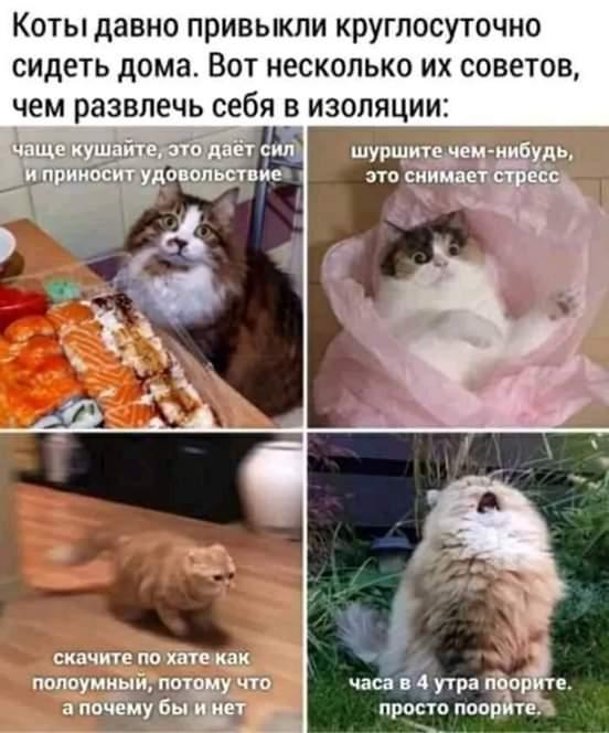 FB_IMG_1591013489134.jpg